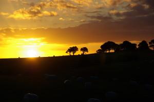 SUN SET NORTH ISLAND